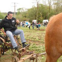 8 mai 2016 fête du cheval Tréouergat